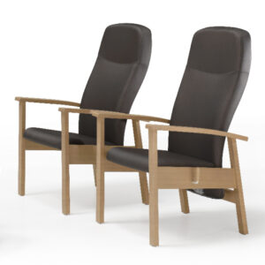 BE2901 Seattle wooden reclining relax chair